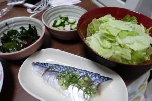 しめ鯖は糖質制限ダイエット中でも食べてOK!