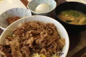 お米の代わりに豆腐を使った牛丼ライト。満足感はかなり有り!
