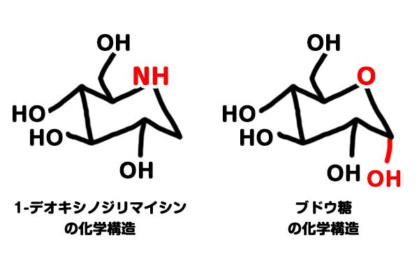 1-デオキシノジリマイシン(DNJ)とブドウ糖の化学式