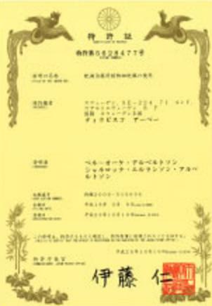 GLM社の特許技術